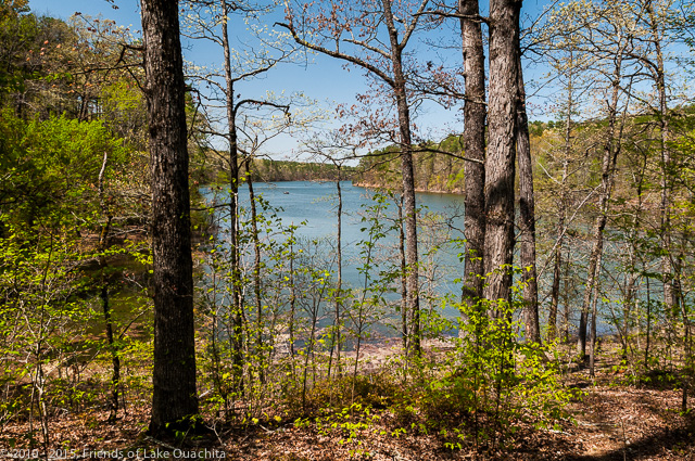 A beautiful view of Lake Ouachita along the Tompkins Bend to Joplin Trail Segment