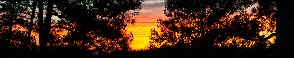 Joplin_Campground_Sunset_Header