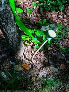 20150715_Trail_Maintenance_and_Plaques-4
