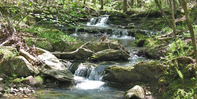 Joplin Cascades - LOViT