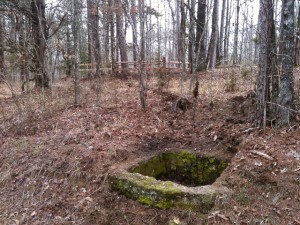 Old well at the Homestead site.
