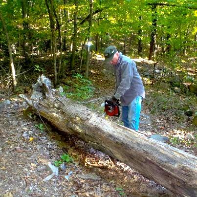 Clearing a large tree on the Joplin Trail segment