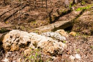 The bridge at the Rock Garden
