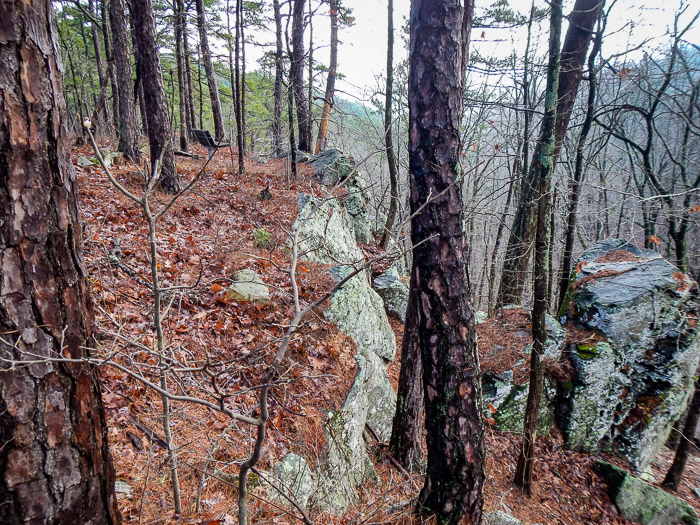 A beautiful overlook from the LOViT just east of Hickory Nut Mountain Road.